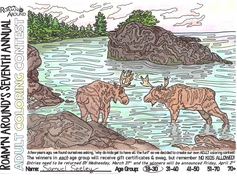 2021 ULTIMATE COLORING CHAMPION -- COLORED PAGE WITH STREAM, TREES, ROCKS, AND MOOSE